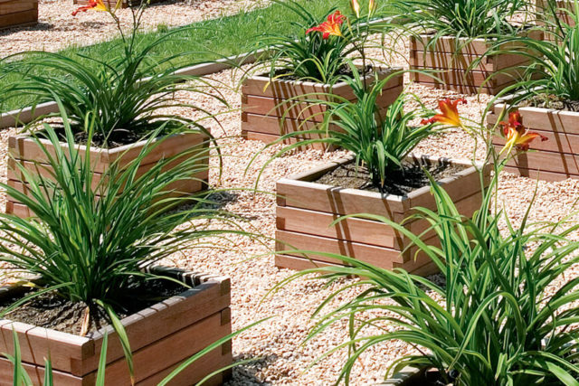 Cómo cuidar jardineras de madera tropical
