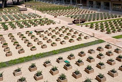 jardineras de madera seakit en parque