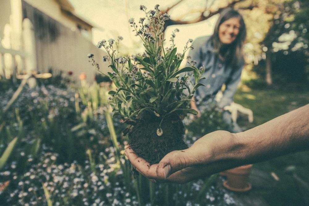 7 Beneficios saludables de instalar jardineras a medida