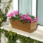 decorar la terraza con plantas