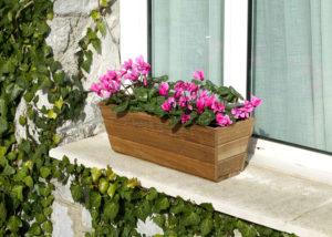 Cómo decorar la terraza con plantas